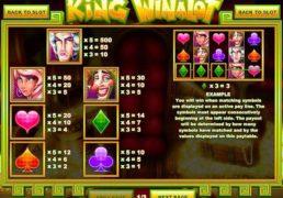 King_Winalot screenshot 2