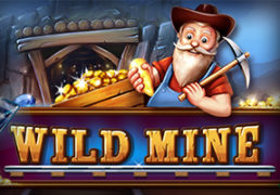 Wild-Mine-Slot screenshot 1